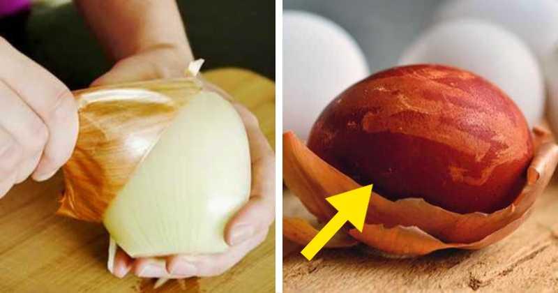 onion peels uses