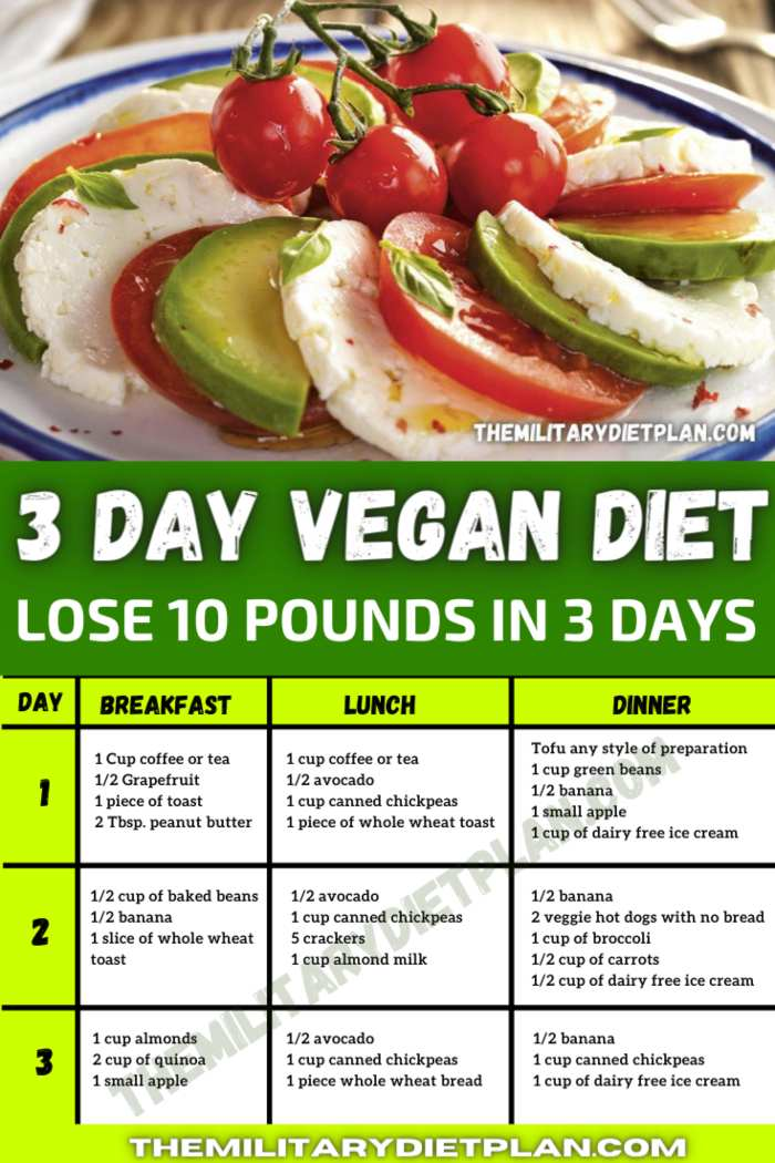 3 day military diet vegetarian