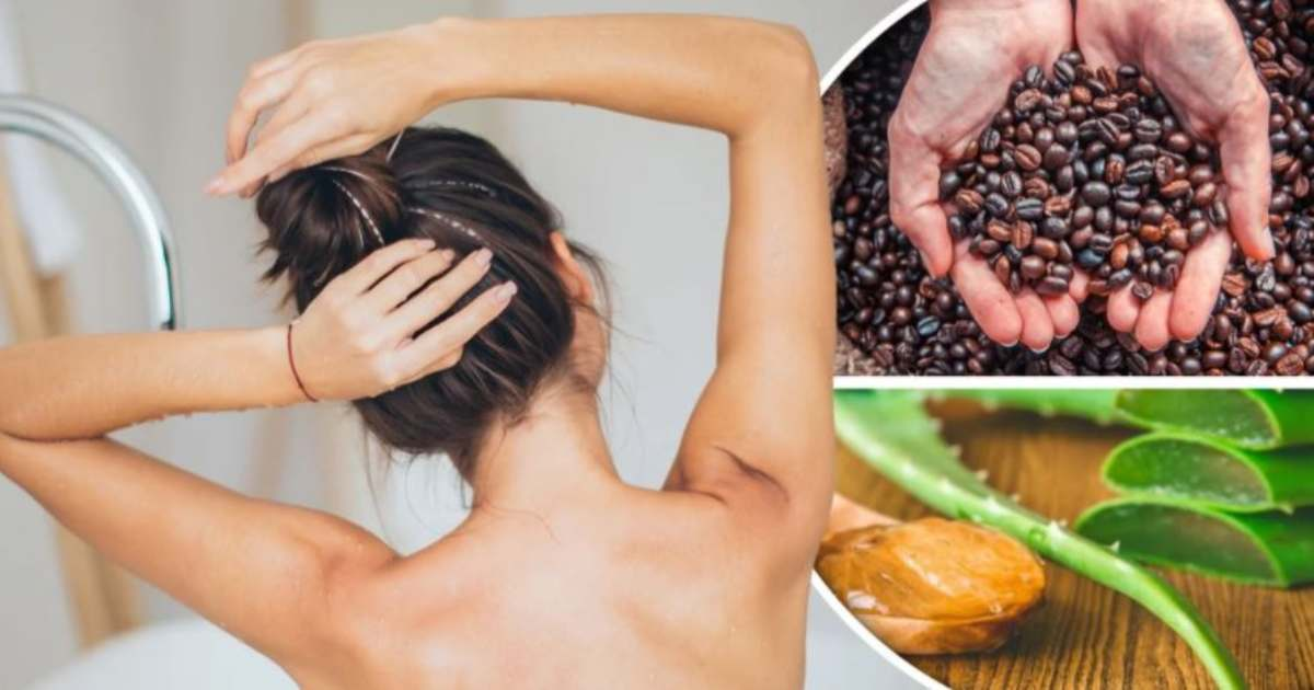 5-natural-shampoos-for-long-and-beautiful-hair